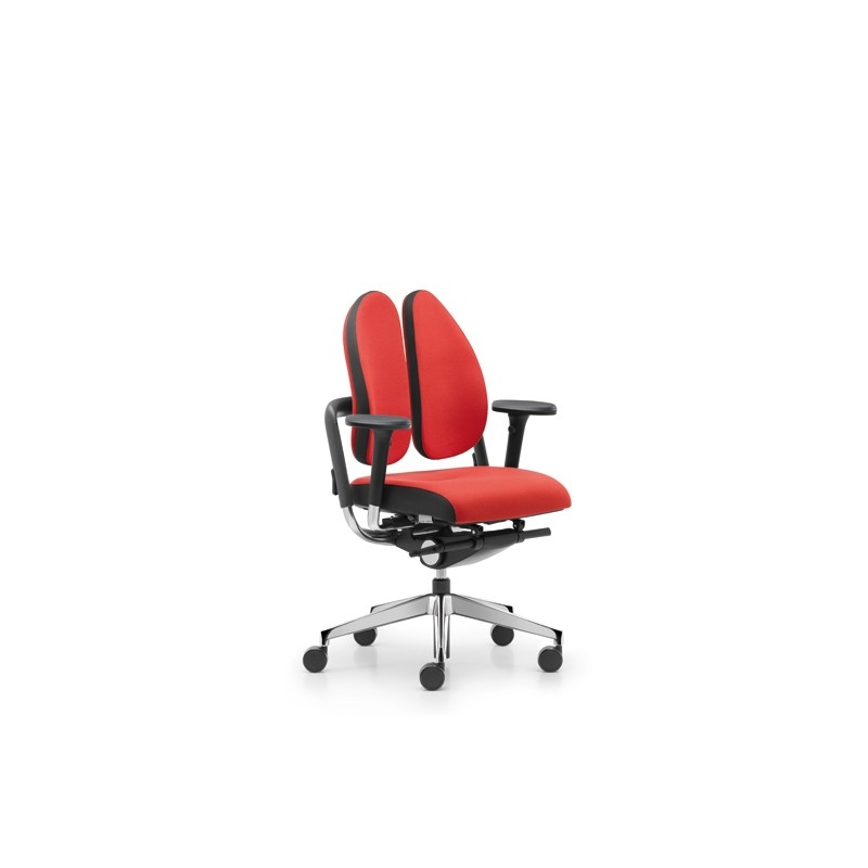 Chaise De Bureau Ergonomique Dos Loading Zoom