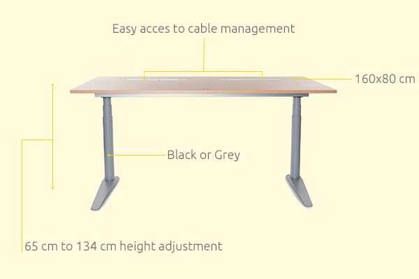 IQ Sit-Stand Desk