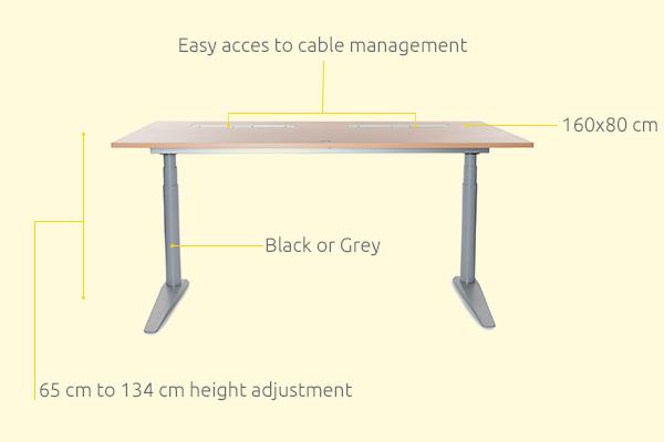 IQ Sit-Stand Desk